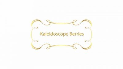 LSHOF-ScreenLogo-KaleidoscopeBerries