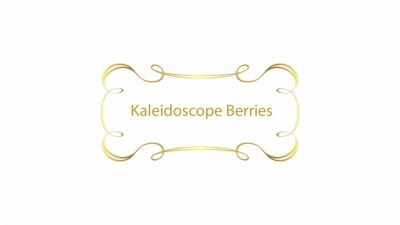LSHOF-ScreenLogo-KaleidoscopeBerries